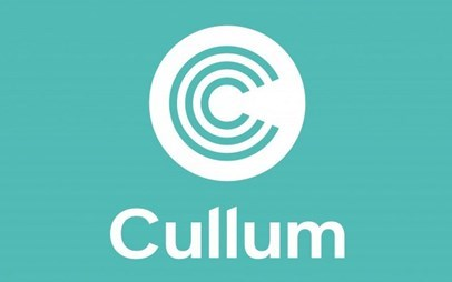 Cullum detuners investments ltd boca tci investment fund management